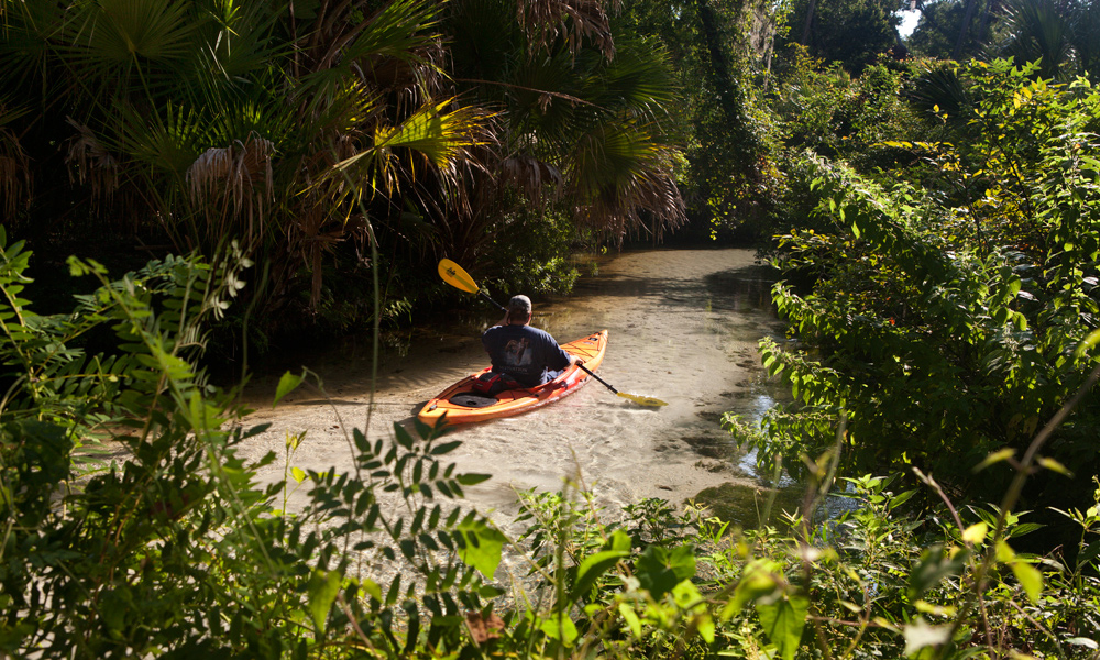 Kayak on the Juniper Springs Run